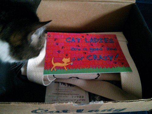 The CatLadyBox May Just Be the Best Subscription Ever