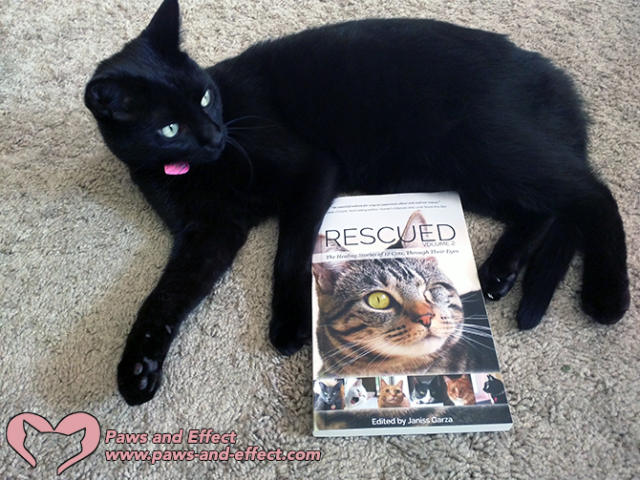Win A Copy of Rescued Volume 2!
