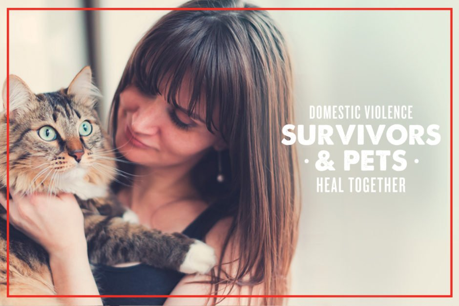 URI and Purina are working together to help domestic violence victims and their pets.