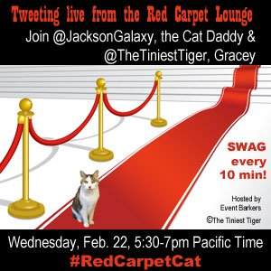 Want To Walk The Red Carpet? Come On Down!