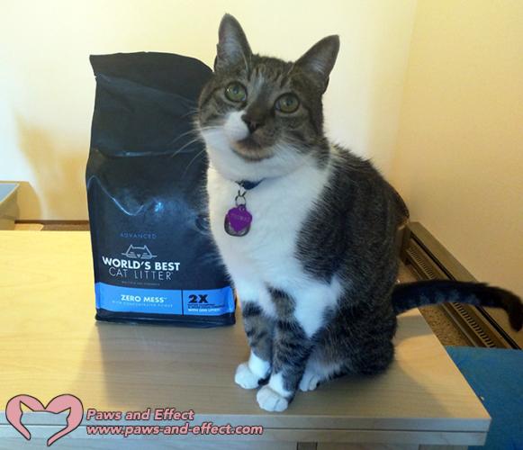 World's Best Cat Litter's New Formula Is #alitterbitamazing